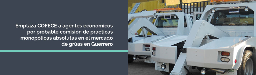 Banner-Gruas-Guerrero-D-COLOR
