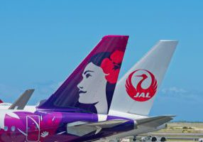 14 hawaiian airlines